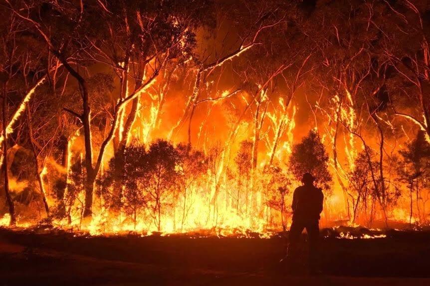 Aust PM slams Gretas bushfire comments