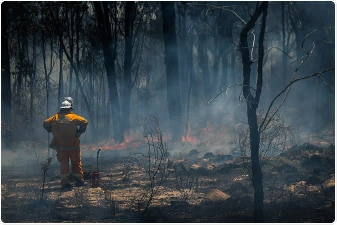 NSW bushfires officially put out