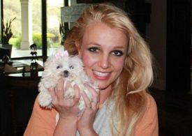 Britney Spears 'reunited with dogs' after her staff took them over health fears