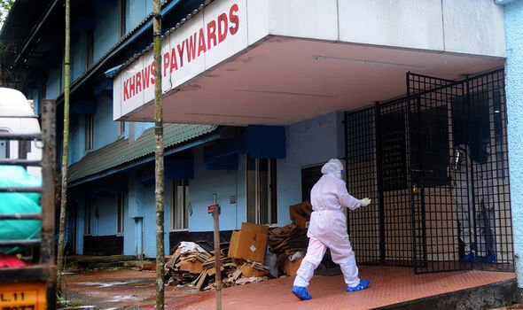 India outbreak fears: Hundreds isolating as bat virus 'more deadly than Covid' detected
