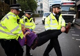 London protest chaos as 'Animal Rebellion' vegans scale Home Office – police at scene